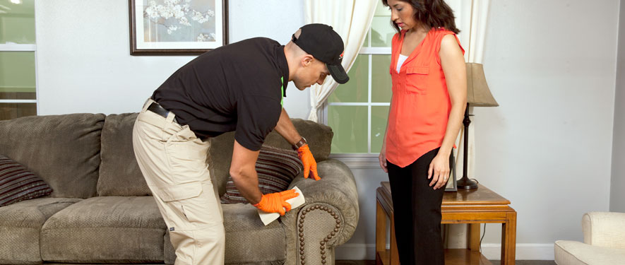 Palatka, FL carpet upholstery cleaning