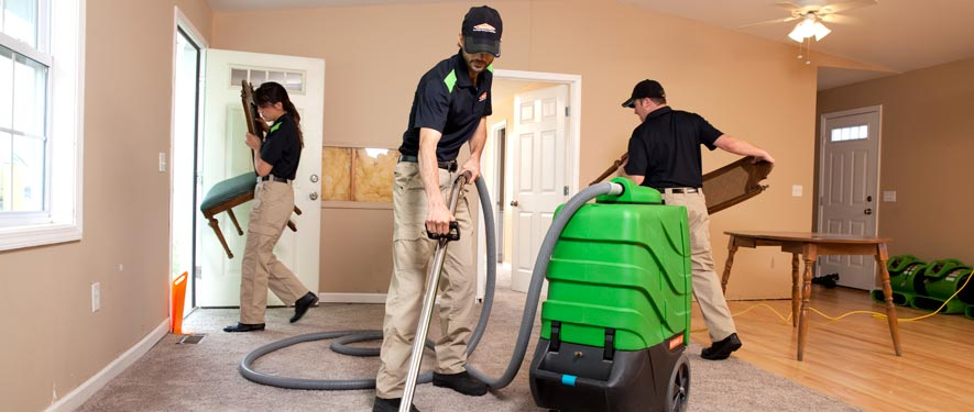 Palatka, FL cleaning services